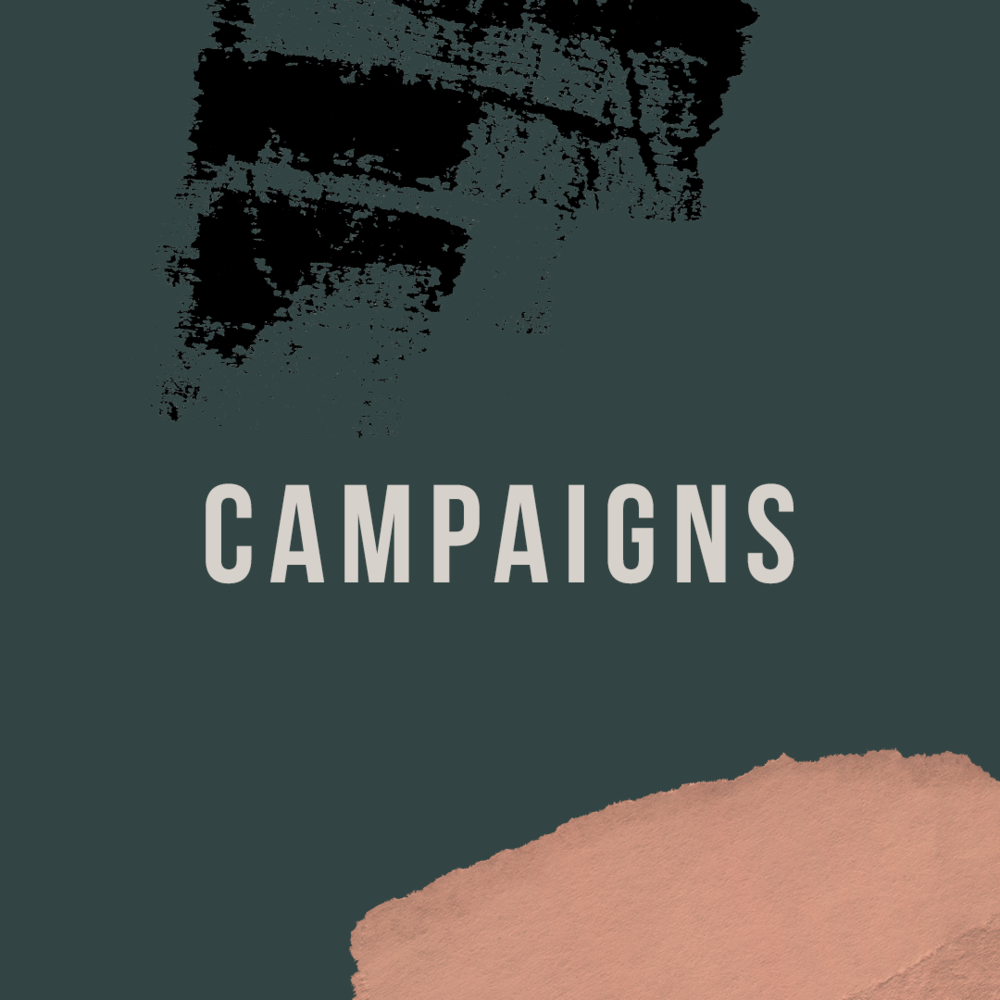 View Campaign (Advertising & Promotion) Management Service.png
