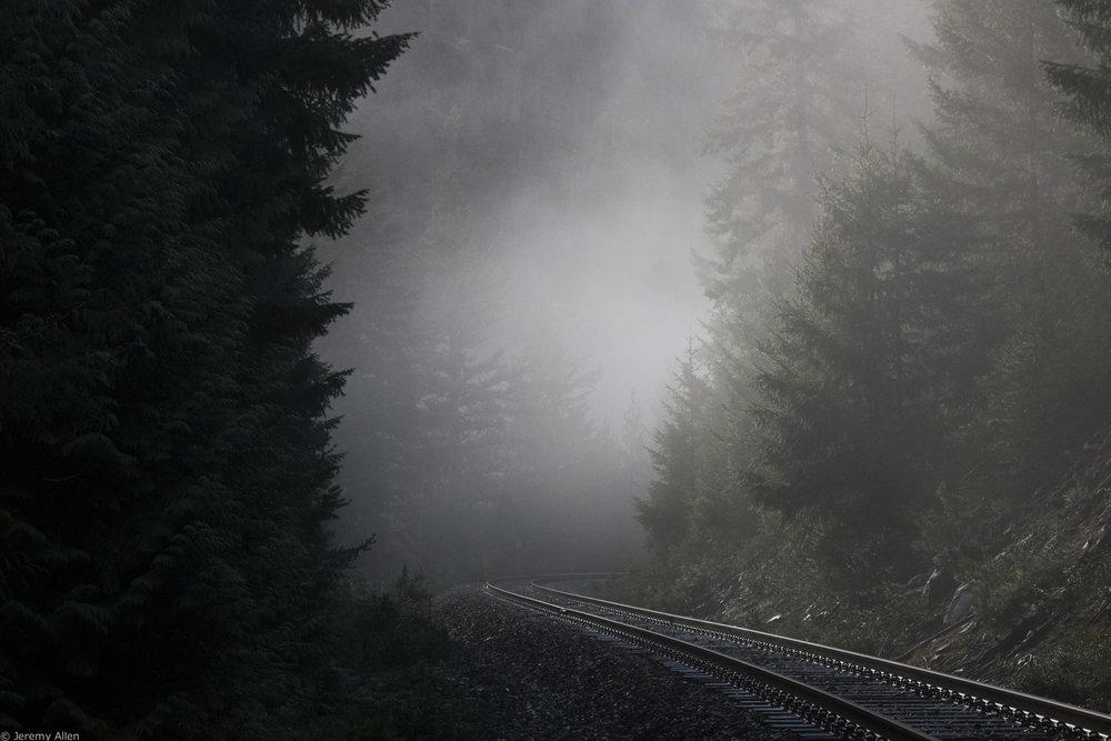 Misty Tracks, Pemberton BC (1).jpg