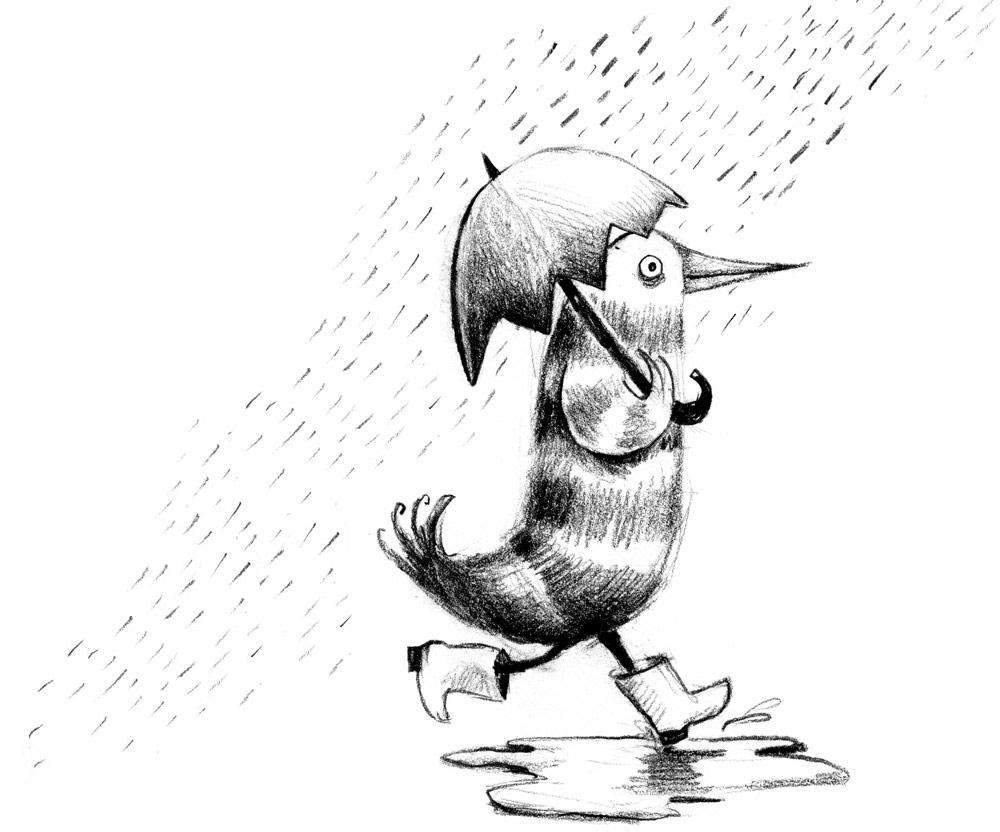 ss-bw-om-rain1000.jpg
