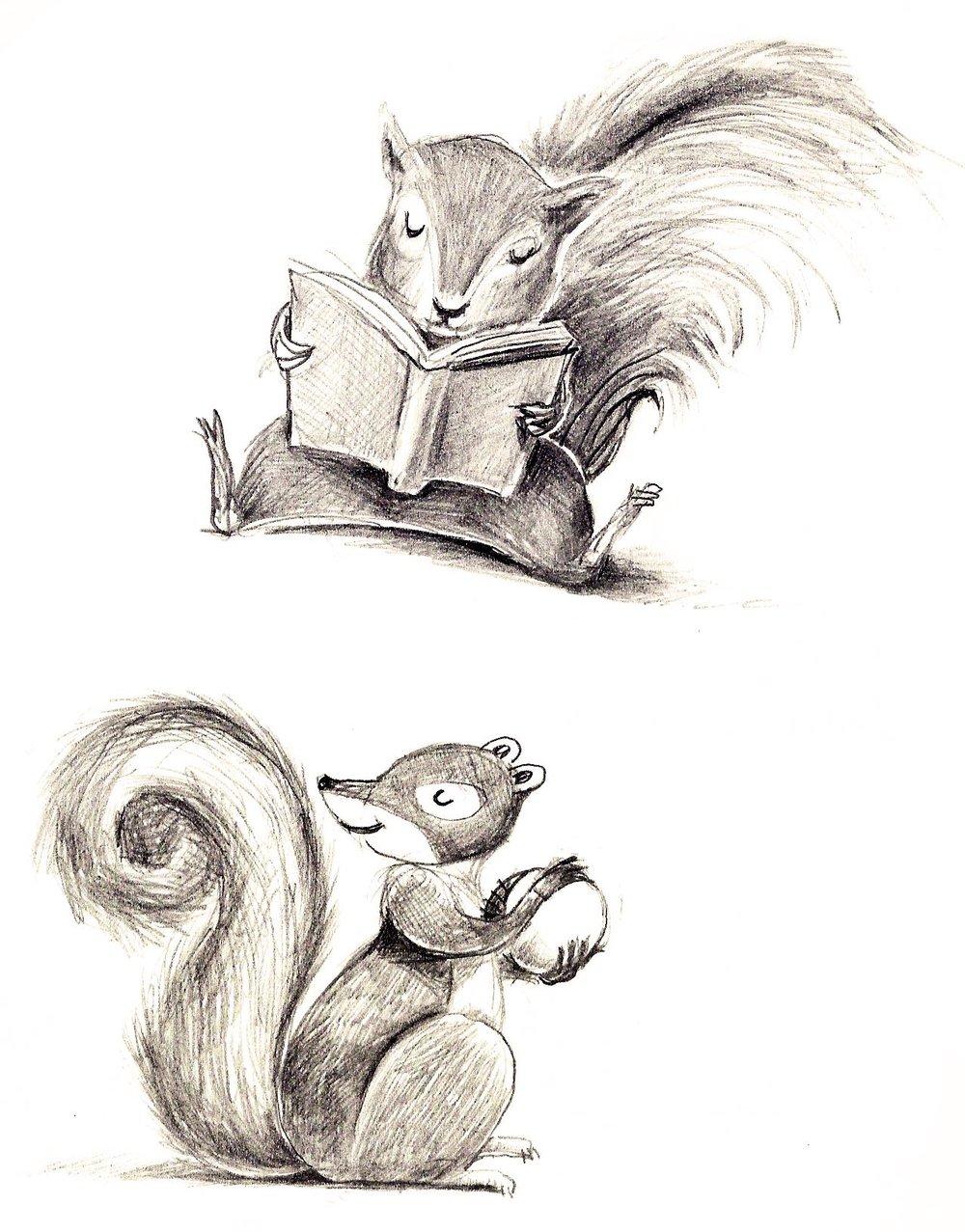 squirrelpage2-hi.jpeg