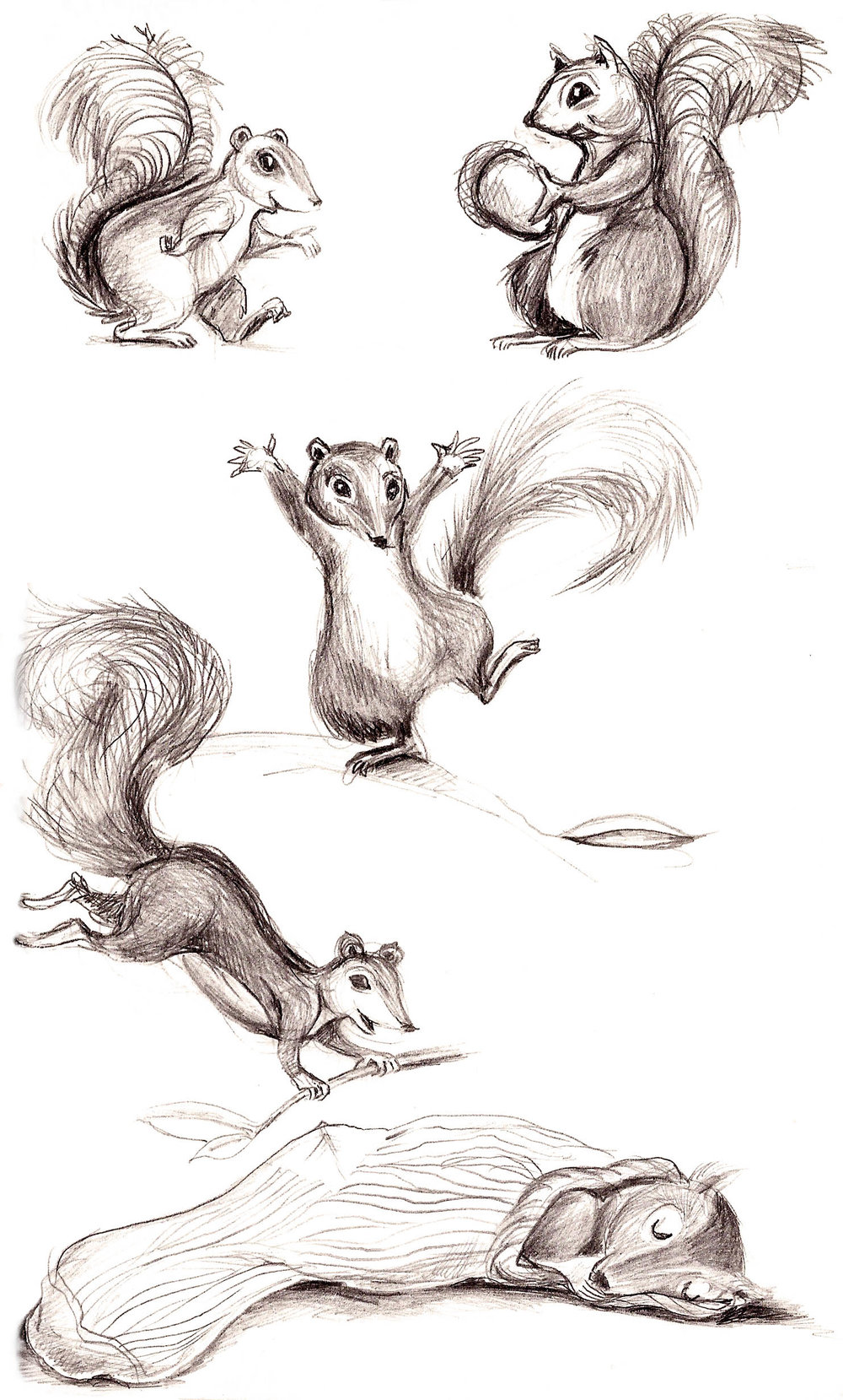 squirrelpage1-hi.jpeg