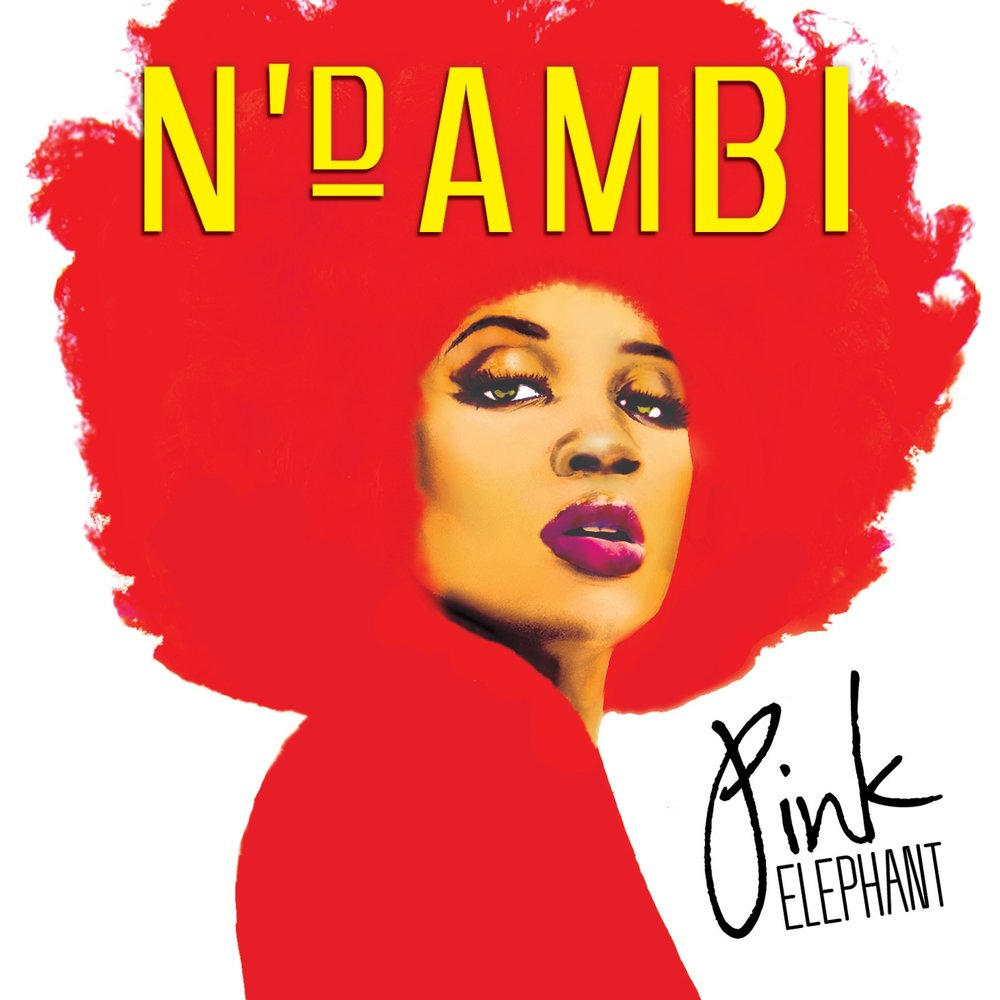 NDAMBI_PinkElephant_Cover_HI RES copy 2.JPG