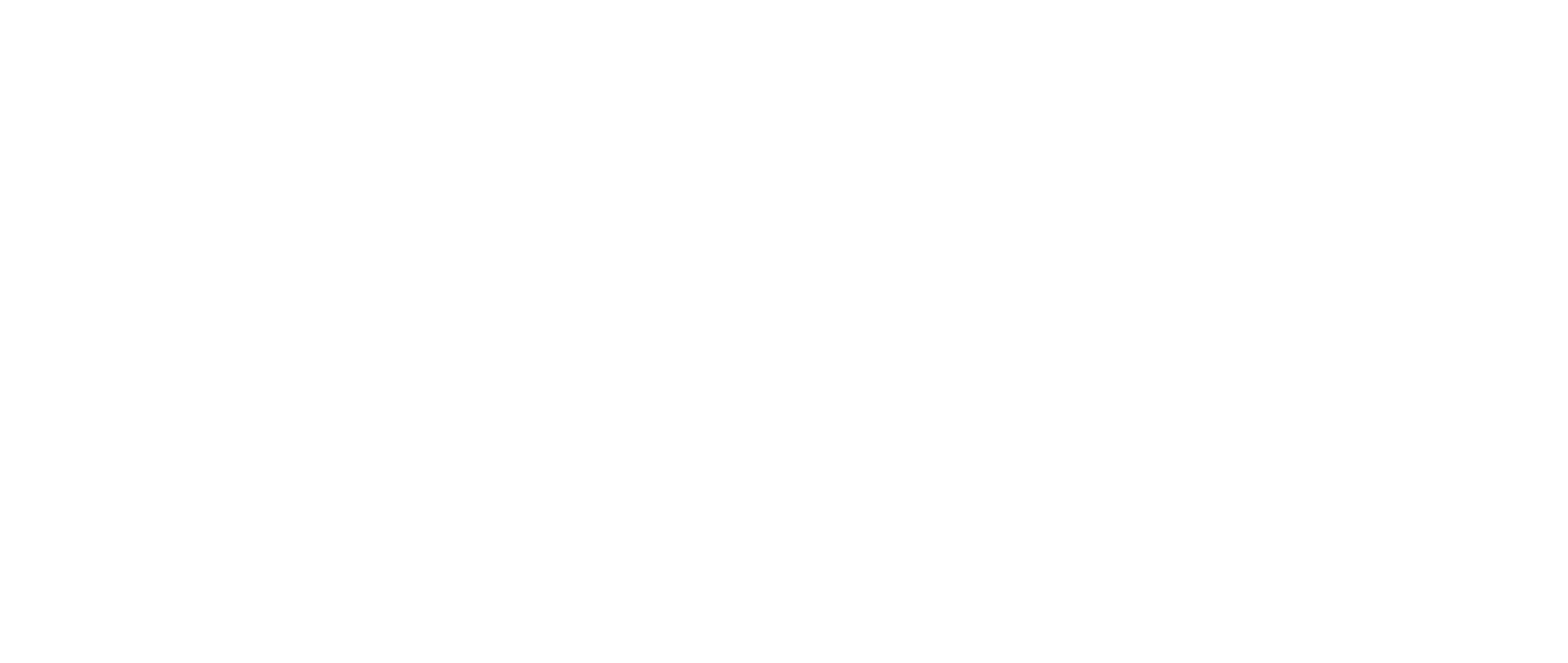 WORKPLACE BENEFIT SOLUTIONS