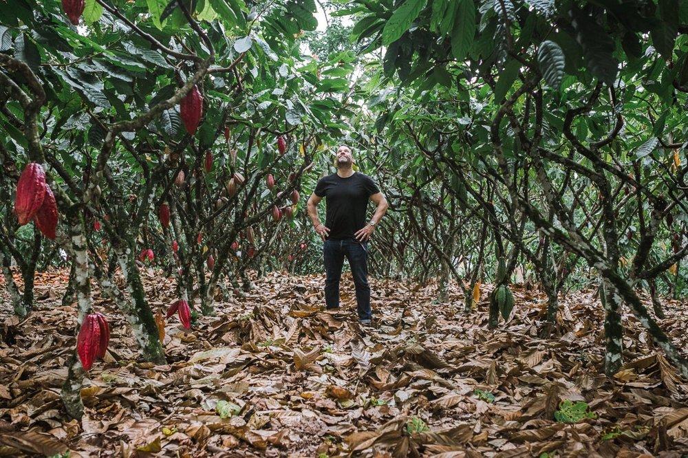 Gavin Cox, Colombia