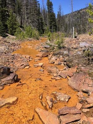 Mike Horse Mine, Upper Blackfoot River