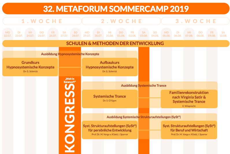 metaforum-sommercamp-neues programm.png