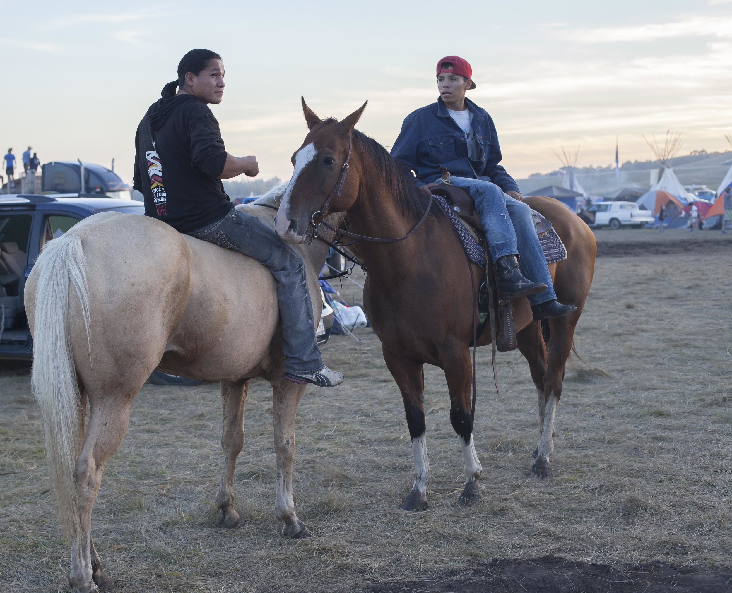 Two horses and their young men at camp. Photo: Jaida Grey Eagle