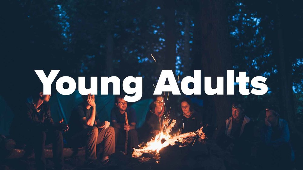 get connected icons - Young Adults.jpg