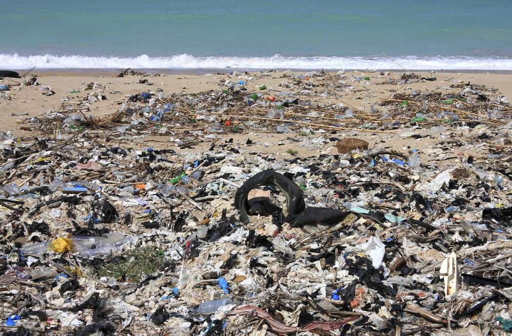 The Great Pacific Garbage Patch -
