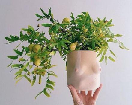 boob planter