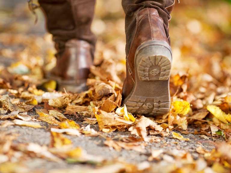 britains-best-autumn-walks.jpg
