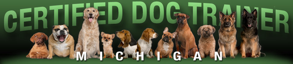Macomb dog training| Dog boarding|Michigan dog trainer|obedience-dog-training
