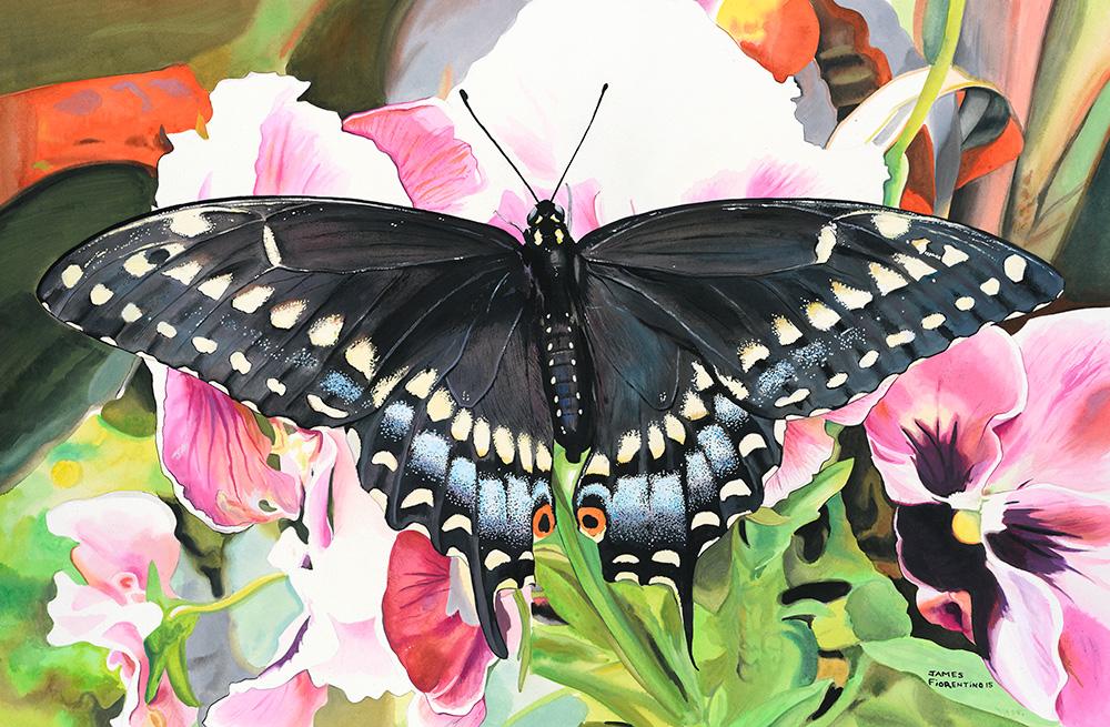 blacktailbutterflyart.jpg