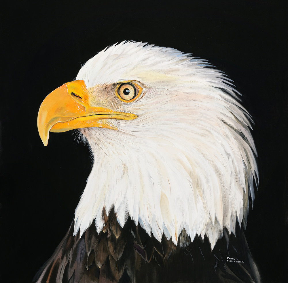 eagleportraitart (1).jpg