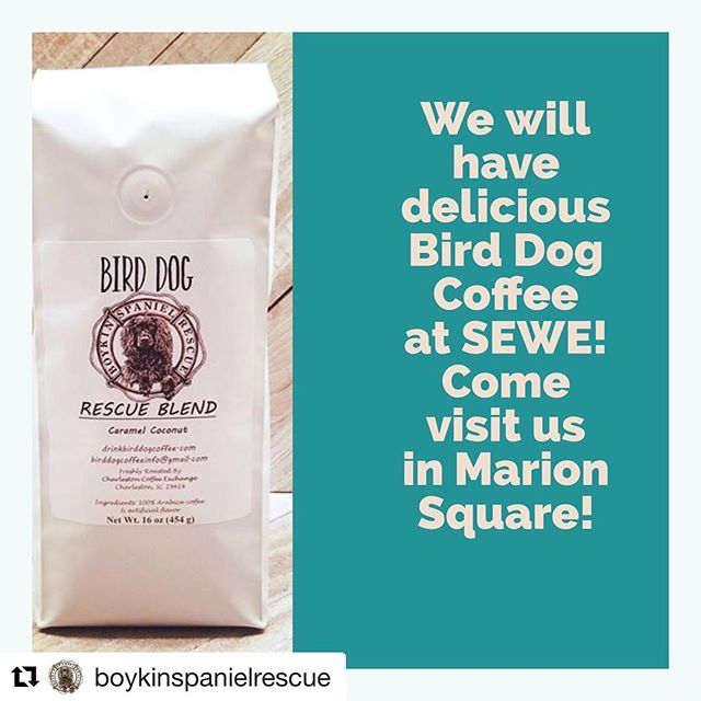 "SEWE is just around the corner here in Charleston! Who else is going? You can stop by Marion Square, say hello to our friends @boykinspanielrescue , and get some BD coffee while you're there! @get_repost #repost . . . ""We love us some Bird Dog Coffee. Come by and pick some up!"" @birddogcoffee @sewechs #sewecharleston"