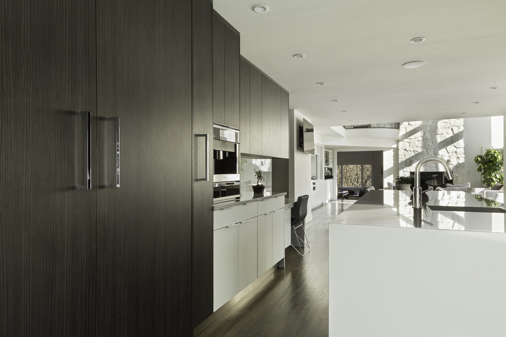 Contemporary style kitchen with large wooden cabinet