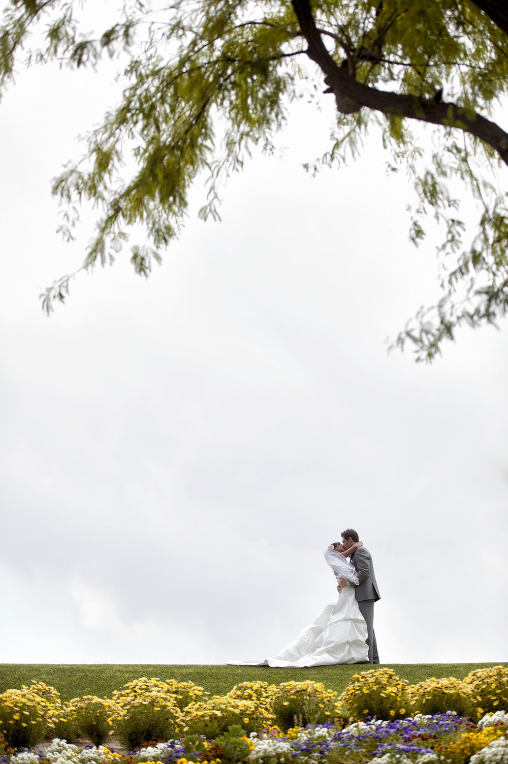 Bride and groom kissing under a tree at Indian Ridge Country Club in Palm Desert.