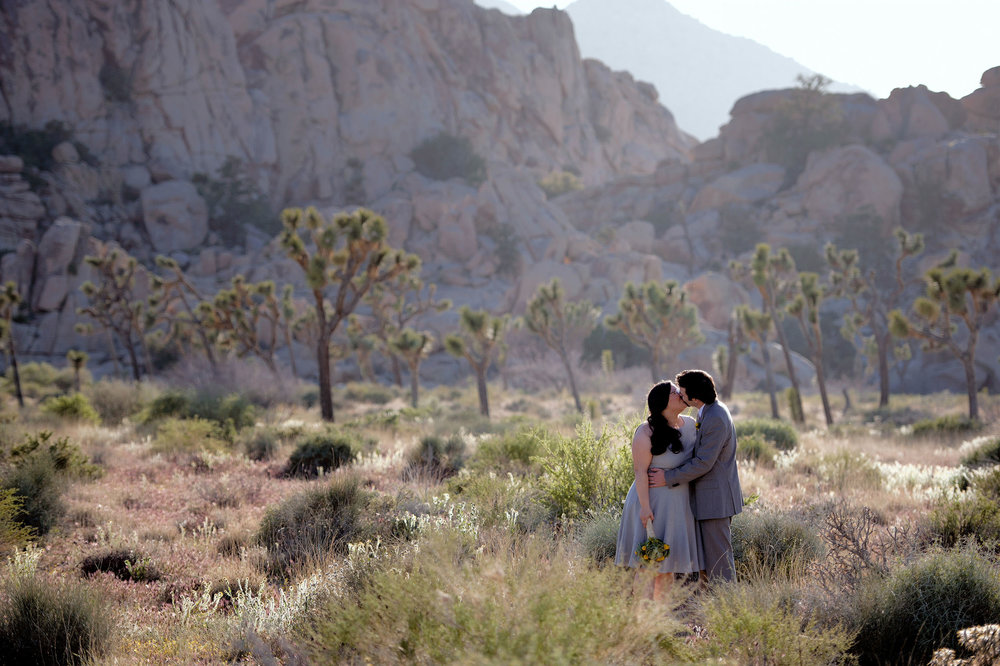 Bride and groom kissing at Joshua Tree National Park.