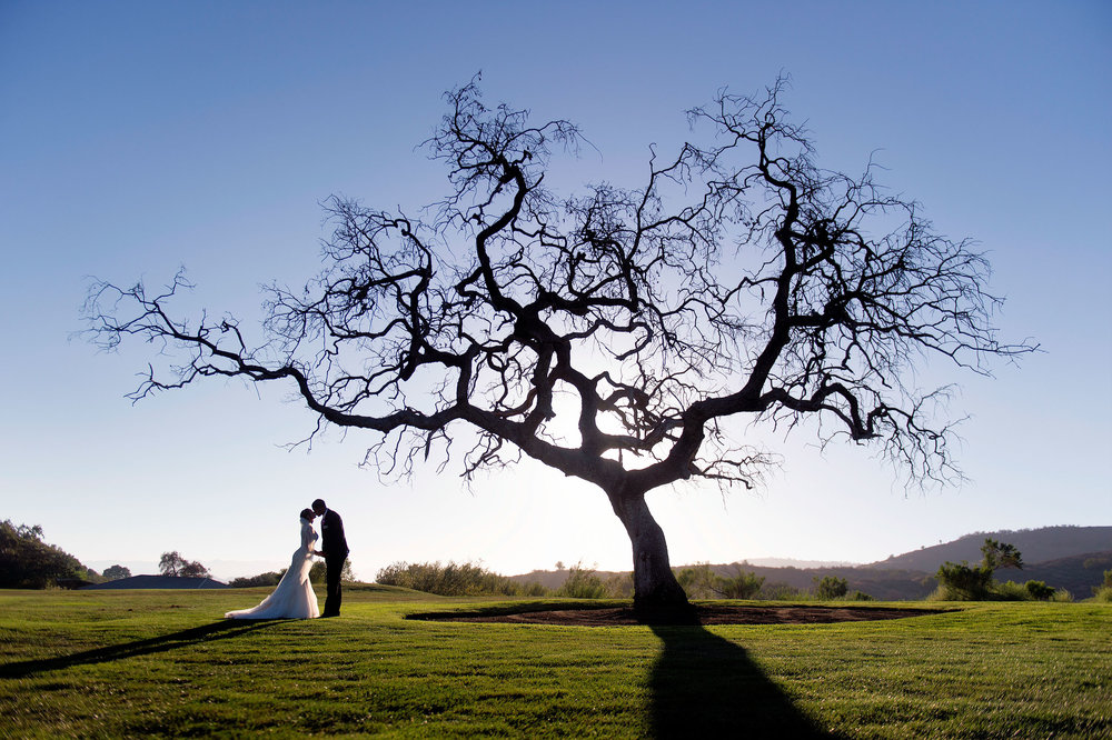 Bride and groom kissing under a tree at CrossCreek Golf Club in Temecula.