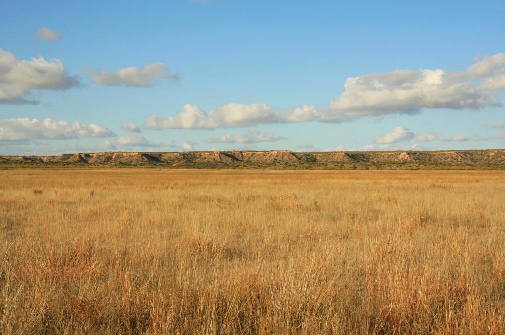 Caprock Escarpment, just south of Ralls Texas