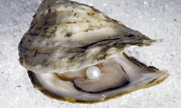 a pearl.jpg