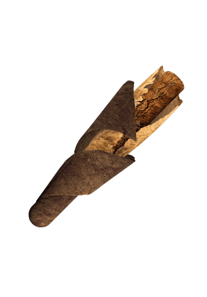 cigar rolling.png