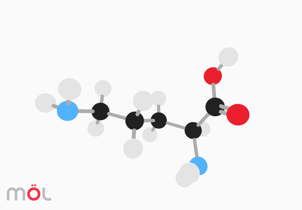 mol_molecule_viz_01.jpg
