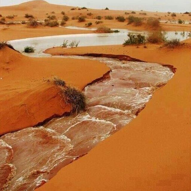 """Be like water"" oued souf, Algeria found on Pinterest . . . . . . . . . #inspirationalquotes #inspiredbynature #slowfashion #slowlife #consciousfashion #consciousliving #ethicalfashion #ethicalclothing #ethicallymade #madeinlondon #handmade"