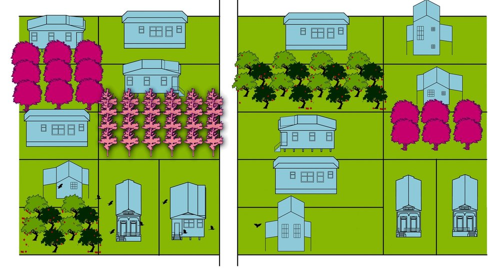 Urban Farming—Disparate lots are assembled to create farming parcels of viable proportion.