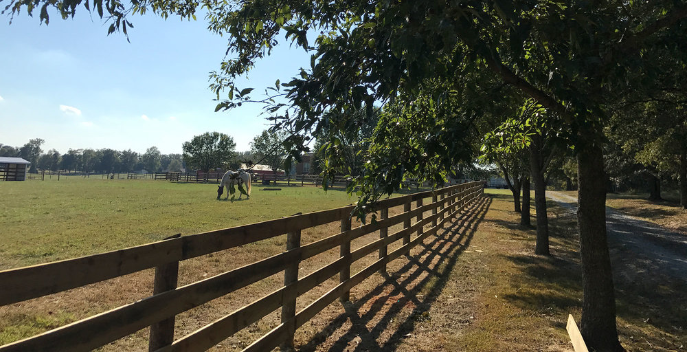 HUNTER-meadows-farm_2.jpg