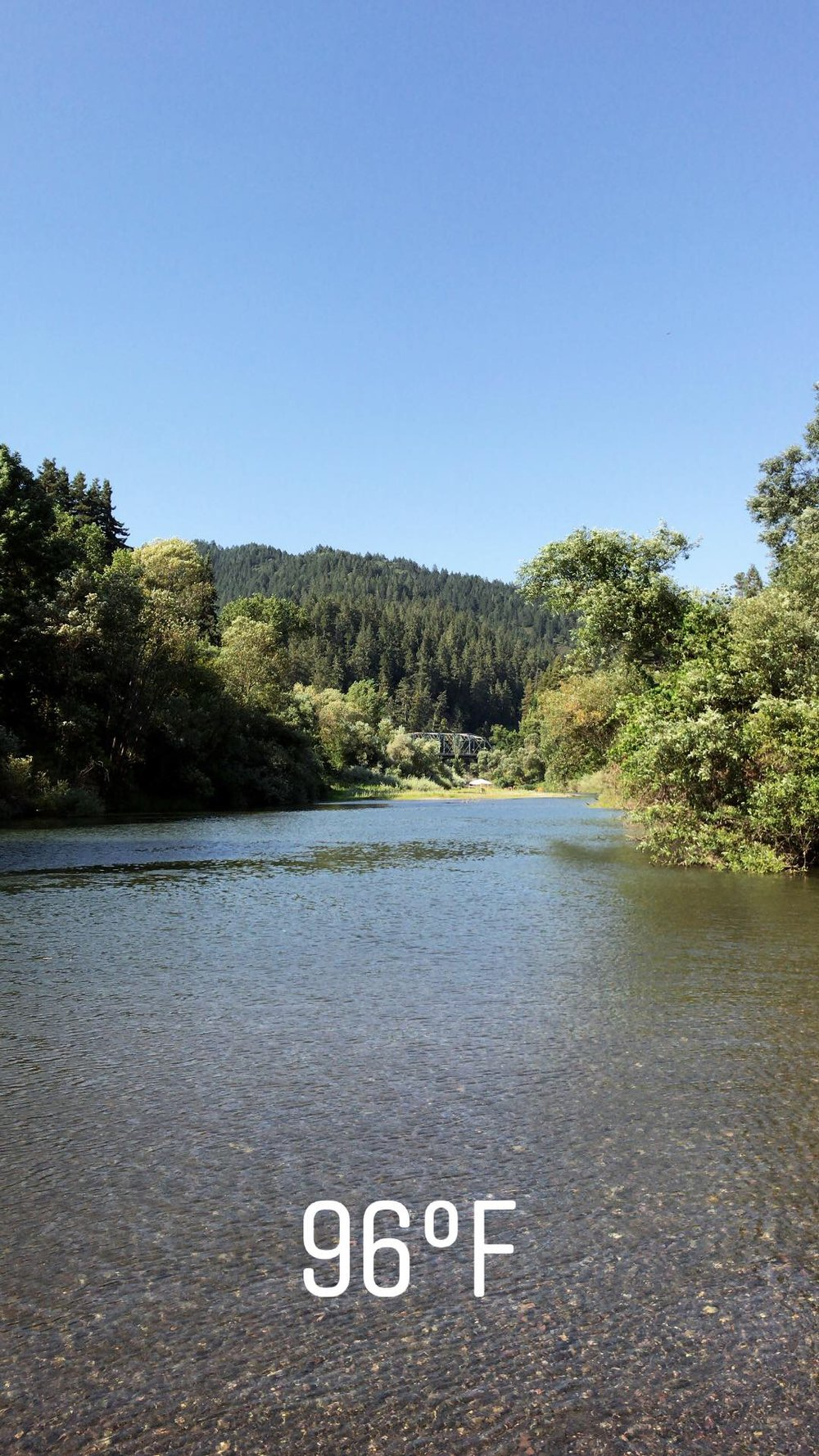 Staying chill in the Russian River while enjoying the late august summer heat waves.