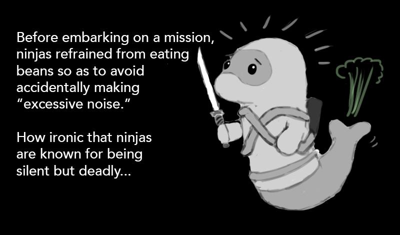 ninja-research4.jpg