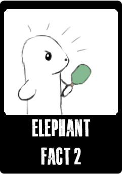 elephant-fact2-button.jpg