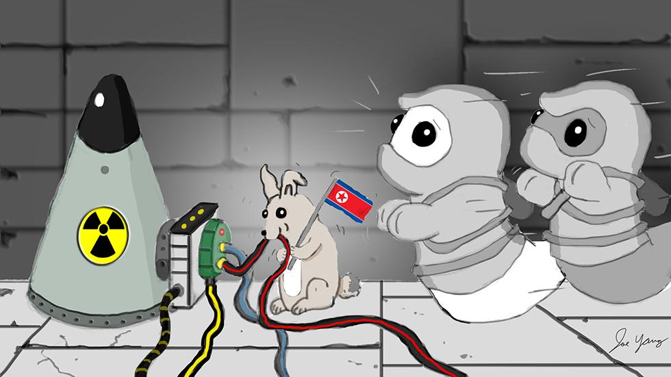 Ninja Seals visit North Korea