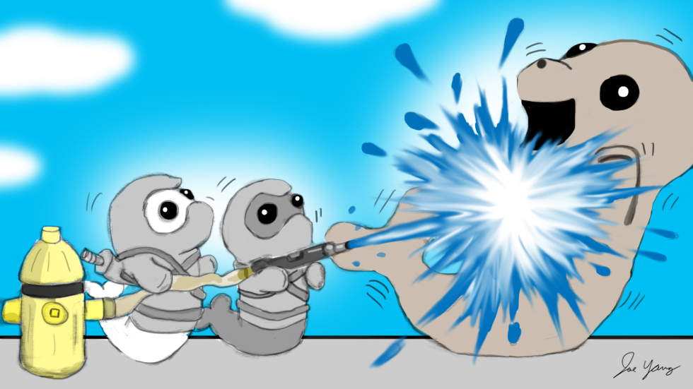 The Ninja Seals hose down one of their friends! It's a hot summer, after all
