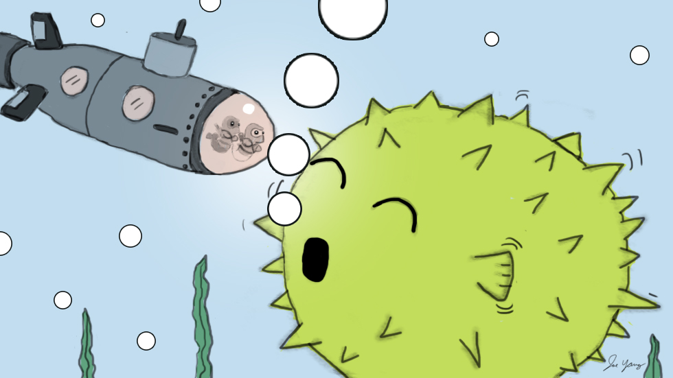 The Ninja Seals go out of their way to visit the giant pufferfish