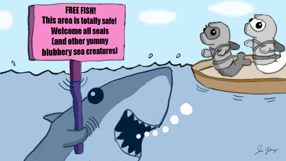 The Ninja Seals encounter another stupid fishing scam