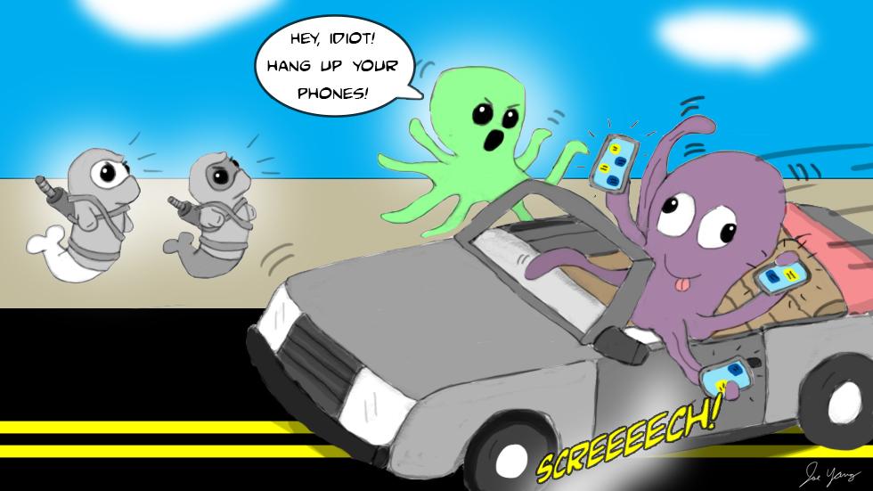 Ninja Seals learn that octopuses also do stupid stuff