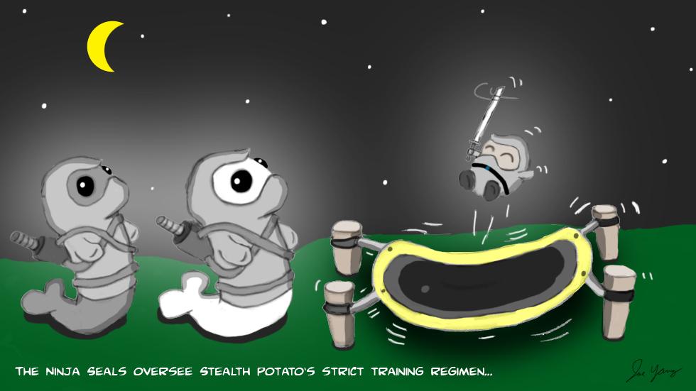 The Ninja Seals oversee Stealth Potato's strict training regimen