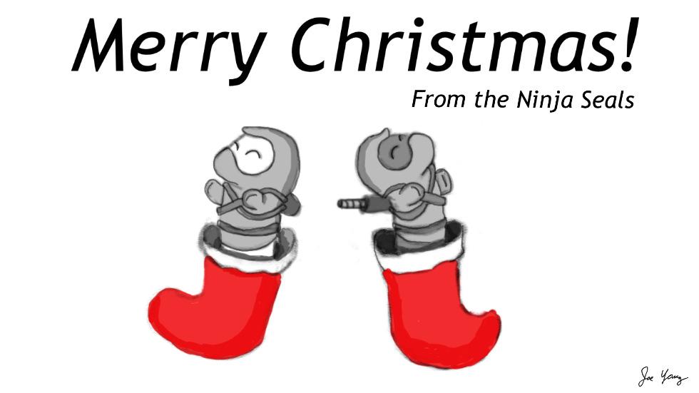 Ninja Seals wish you a Merry Christmas!