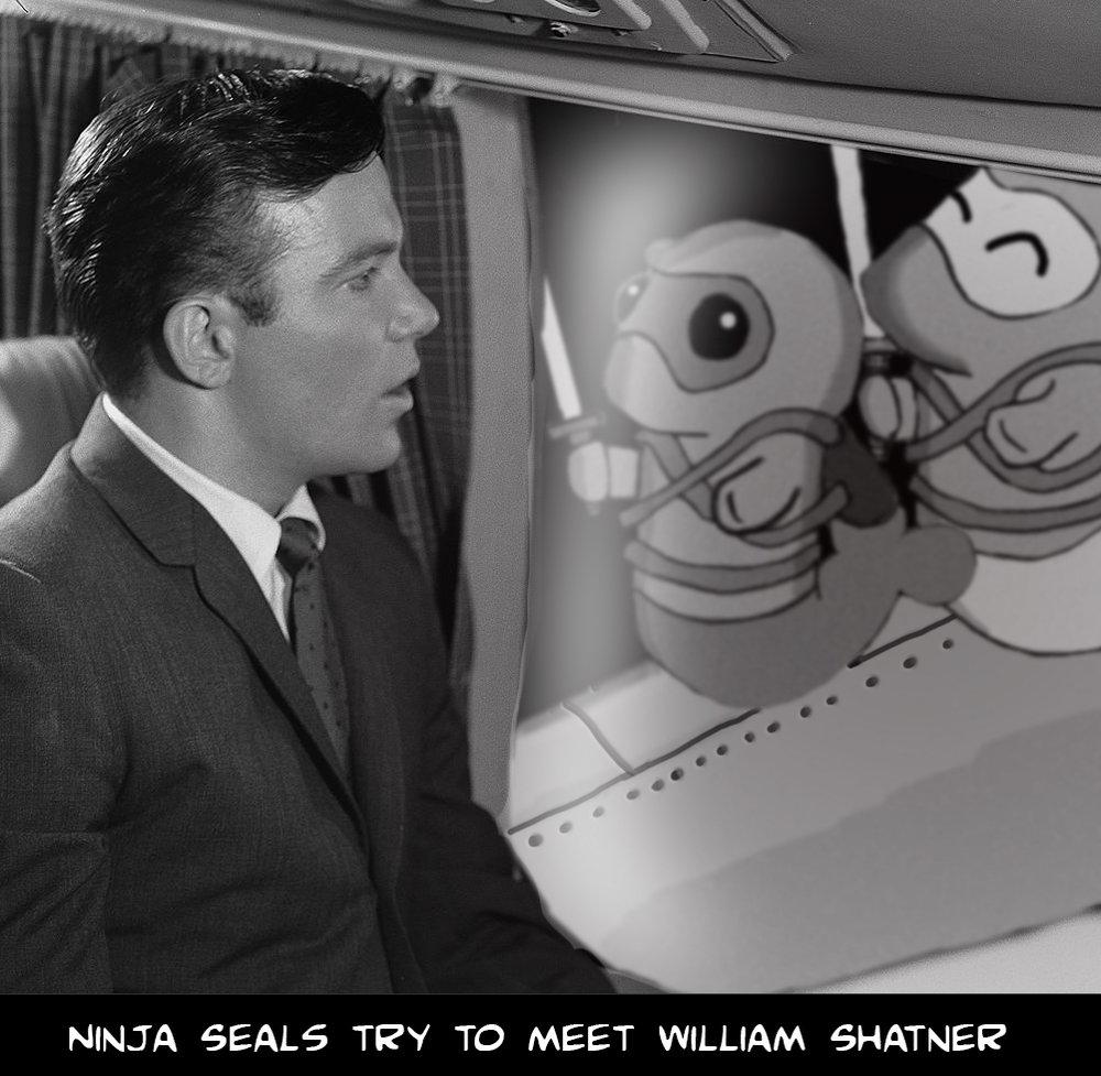 The Ninja Seals try to meet William Shatner