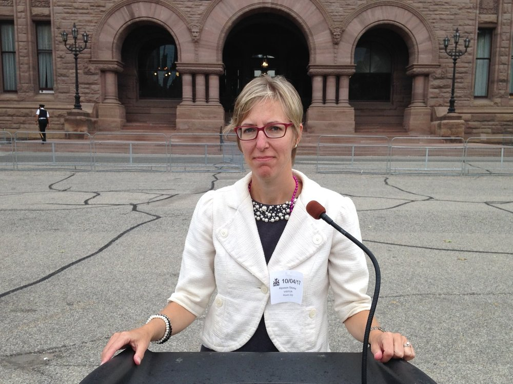 "October 2017  - Alysson leads a delegation of two-dozen supporters to Queen's Park to convince the MTO to  ""Build the Barrier"" .  Family survivors of fatal Highway 401 collisions attended these meetings as well."