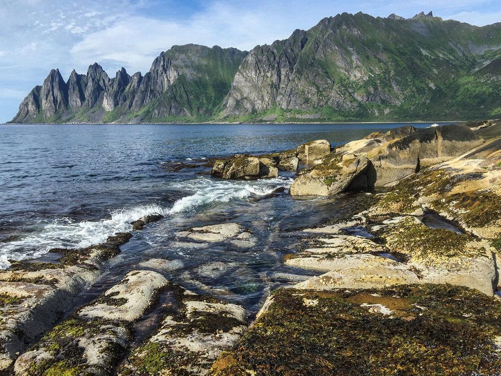 Senja-fjordcruise-s.jpg