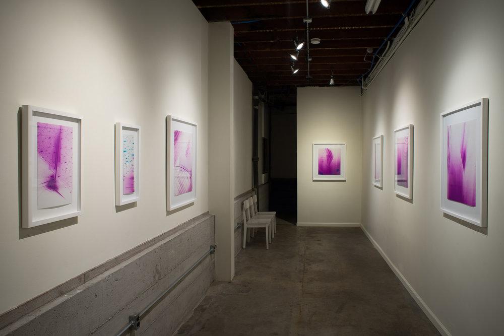 Measuring visual disturbances  (solo exhibition)   Black Crown Gallery,  Oakland, California 2016