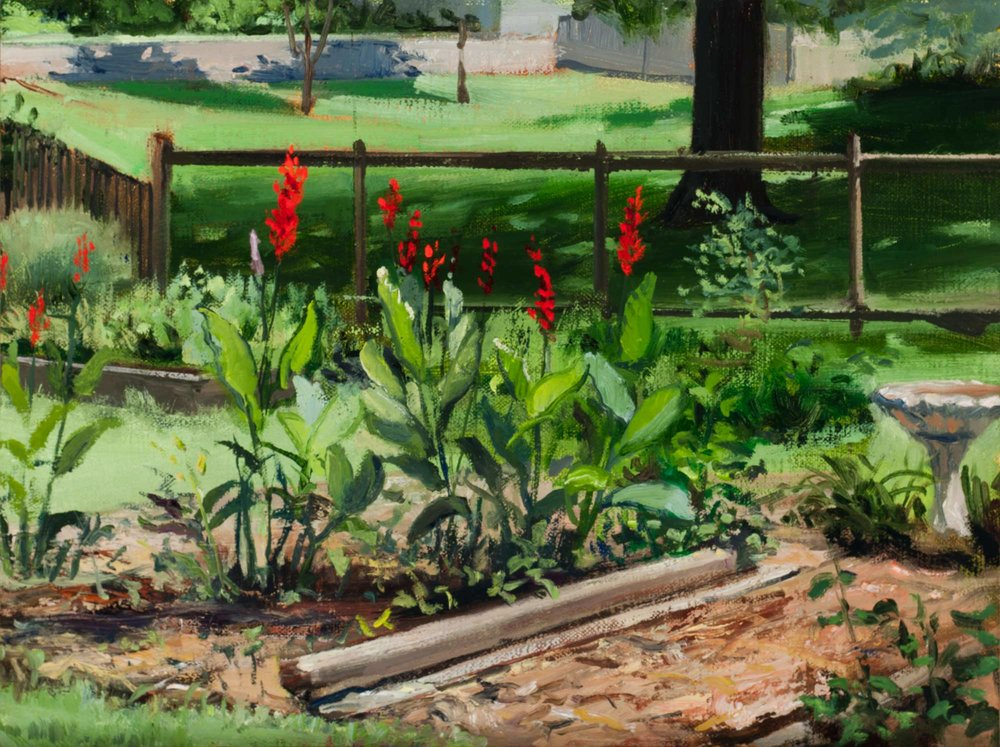Cannas In Ann's Cutting Garden