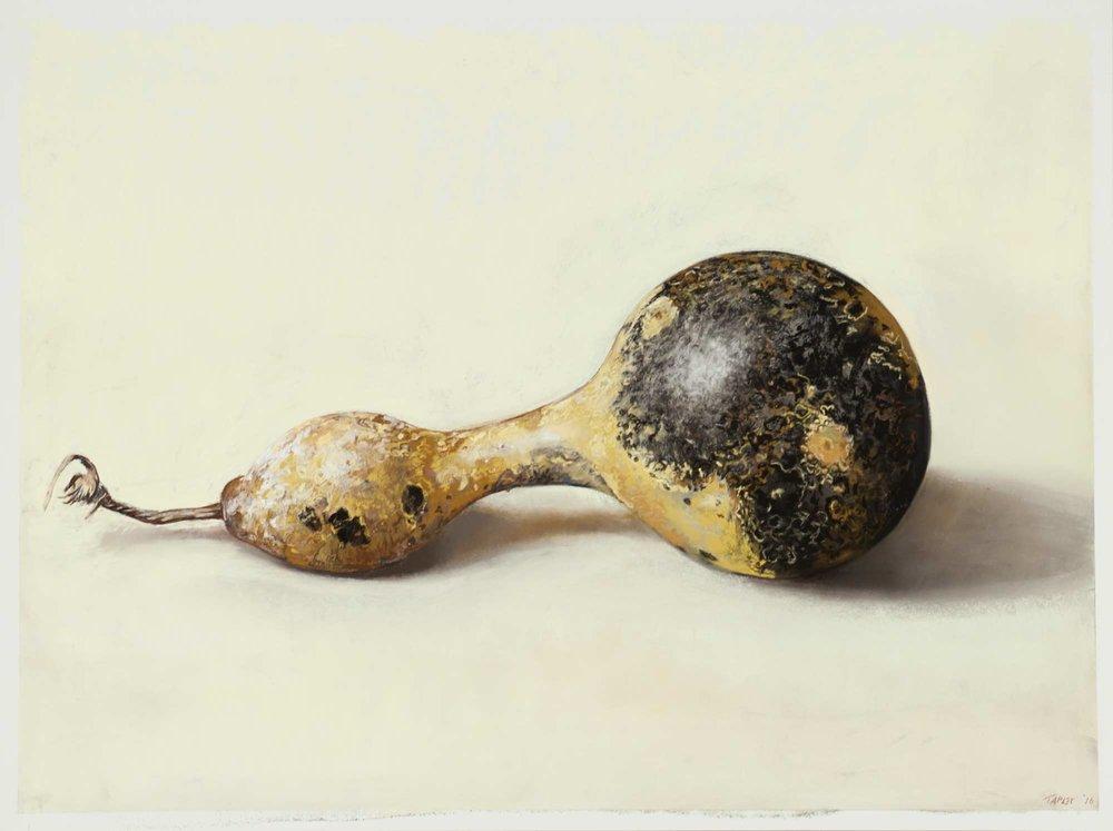 Speckled Gourd I