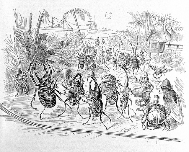 "Humorous illustration of the German scientists and crew shown as insects having a good time on shore in Sumatra. Note the ""smiley face"" sun. P. 361. In: ""Aus den Tiefen des Weltmeeres"" by Carl Chun, 1903. Call No. Q115.V15 1903. Image ID: ship3387, Voyage To Inner Space - Exploring the Seas With NOAA Collect"