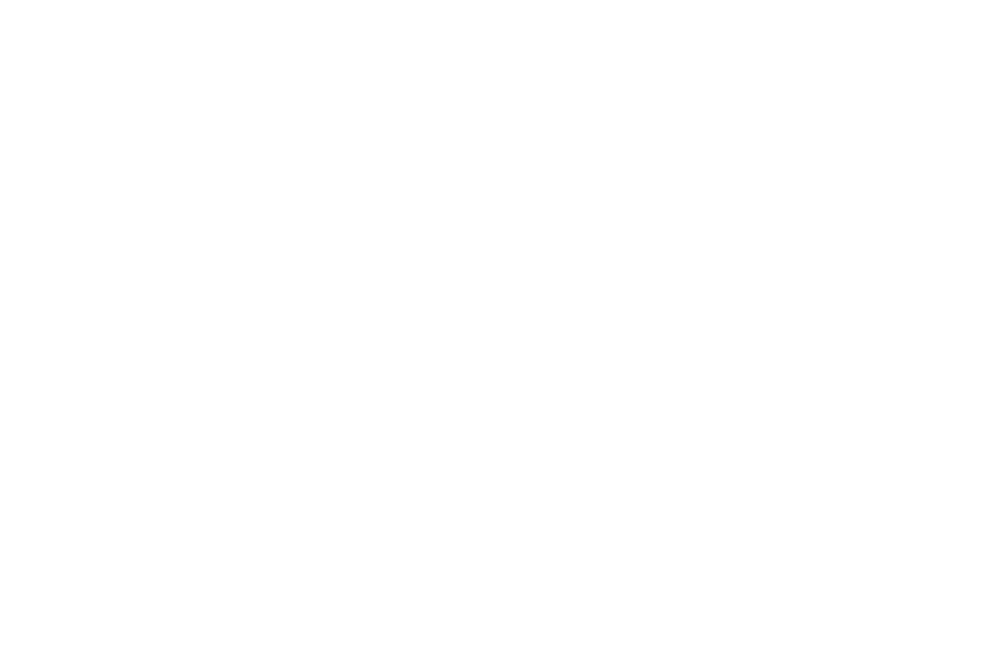 OFFICIAL SELECTION - New York Short Film Festival - 2017.png