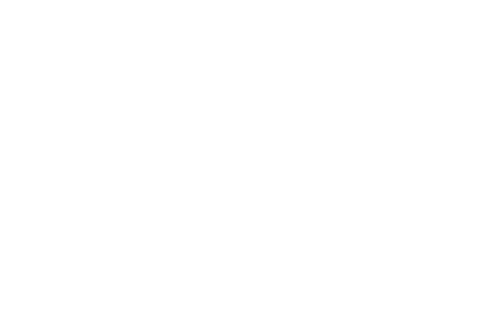 WINNER BEST DRAMA - NYC Indie Film Awards - October 2017.png