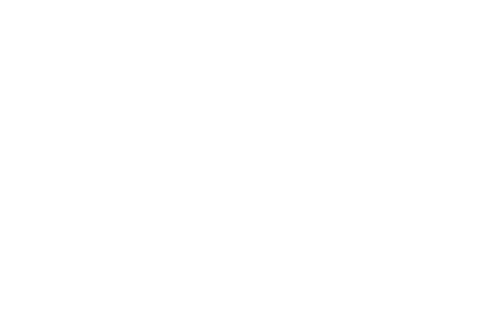 WINNER BEST ACTRESS  MICHELE LYMAN - Womens Only Entertainment Film Festival - 2017.png